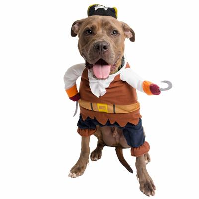 Pirate Dog & Cat Costume
