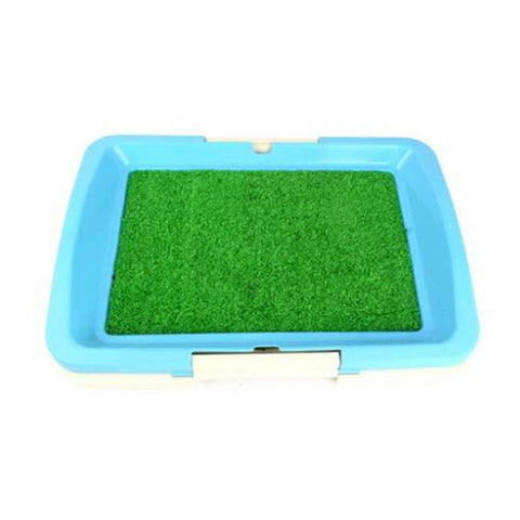 High Quality Indoor Pet Grass Potty Toilet - Blue