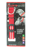 LED Dog Collar Red