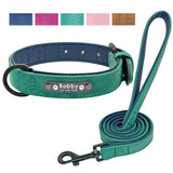Personalized Leather Padded Dog Collar and Leash
