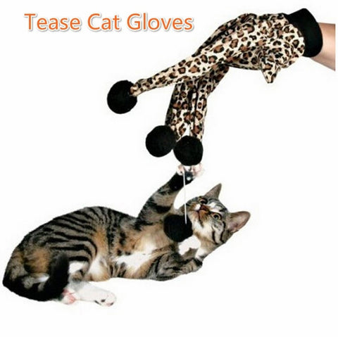 Cat Hand Glove with Wool Ball Fingertips Toy