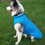 Warm Reversible & Waterproof Dog Vest