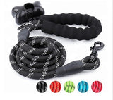 5 FT  Padded Handle Dog Leash with Reflective Threads
