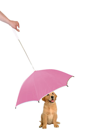 Pour-Protection Umbrella With Reflective Lining And Leash Holder - Pink With White Handle