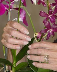 There Are Two Steps To Get Your Nails To Grow Strong and Healthy.