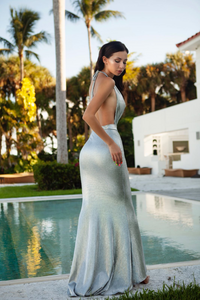 Alise  Cocktail Maxi Dress in Metallic Silver