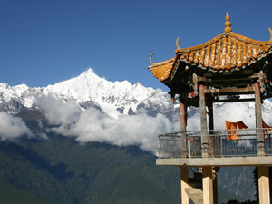 Surviving Druk Air and Discovering Gross National Happiness