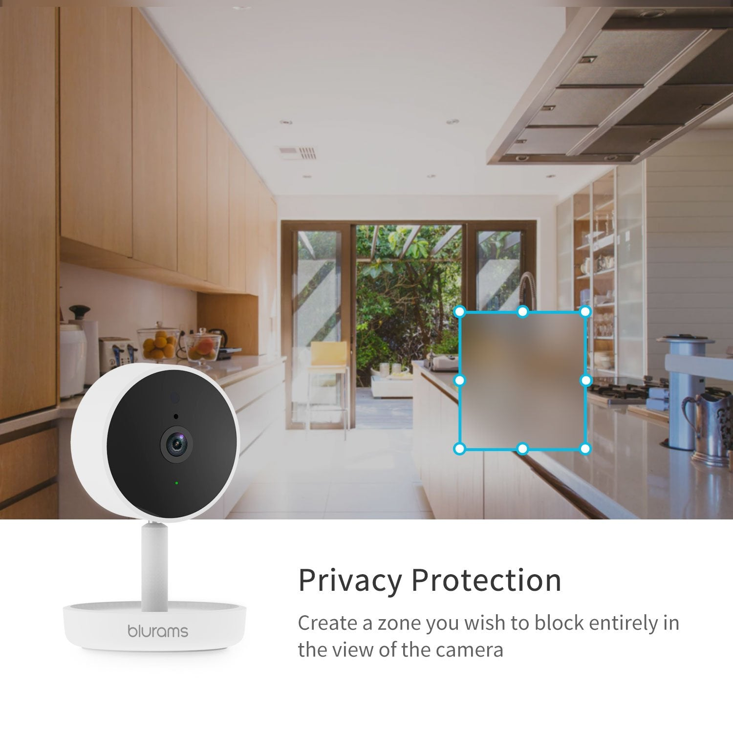 blurams Home Pro - Wireless Security IP Camera CCTV System 1080p FHD w/ Motion and Sound Alert - Latest Living