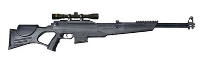 Beeman Dual Air Rifle