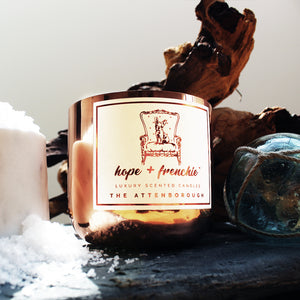 the attenborough, Candles, Sea Salt + Driftwood (240g) - hope + frenchie