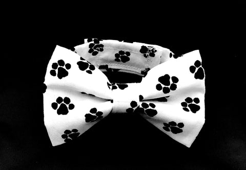 Paws-itively-Adorable-Bow-Tie-Standing
