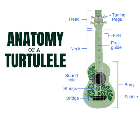 Anatomy of a Turtulele