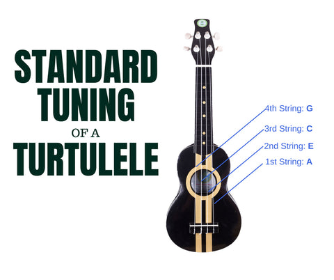 Standard tuning of a Turtulele