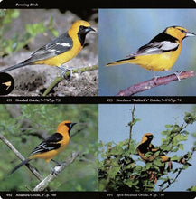 Audubon Society Field Guide to North American Birds: Eastern Region.