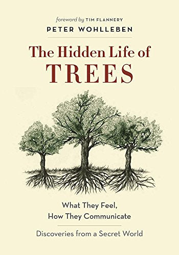 The Hidden Life of Trees: