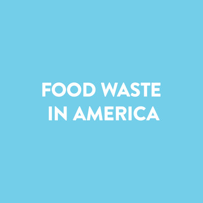 An Introduction to Food Waste in America