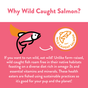 Salmon Says Butternut Jerky Bites