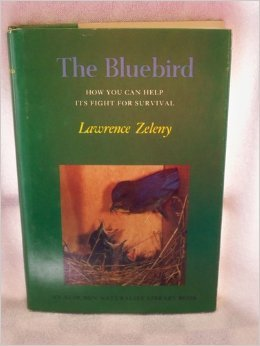 The Bluebird: How You Can Help Its Fight for Survival (The Audubon naturalist library)