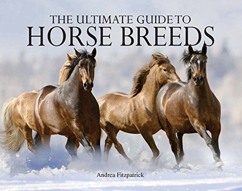 Ultimate Guide to Horse Breeds (Paperback Chunkies)