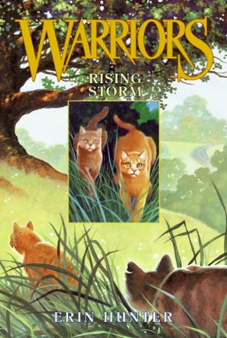 Rising Storm (Warriors, Book 4)