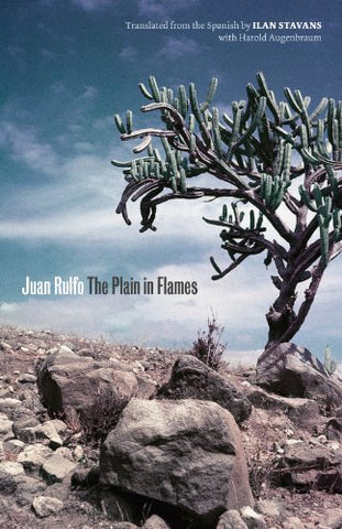 The Plain in Flames (Joe R. and Teresa Lozano Long Series in Latin American and Latino Art and Culture)