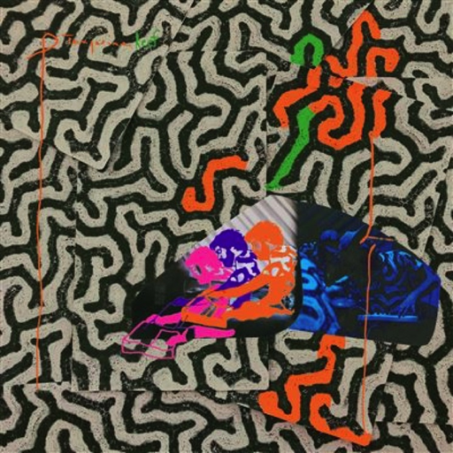 Animal Collective - Tangerine Reef (180g 2LP)
