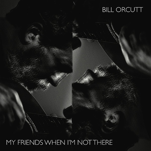 Bill Orcutt  My Friends When Im Not There (LP)