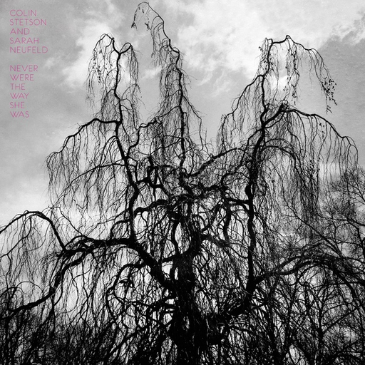 Colin Stetson & Sarah Neufeld - Never Were The Way She Was (LP)