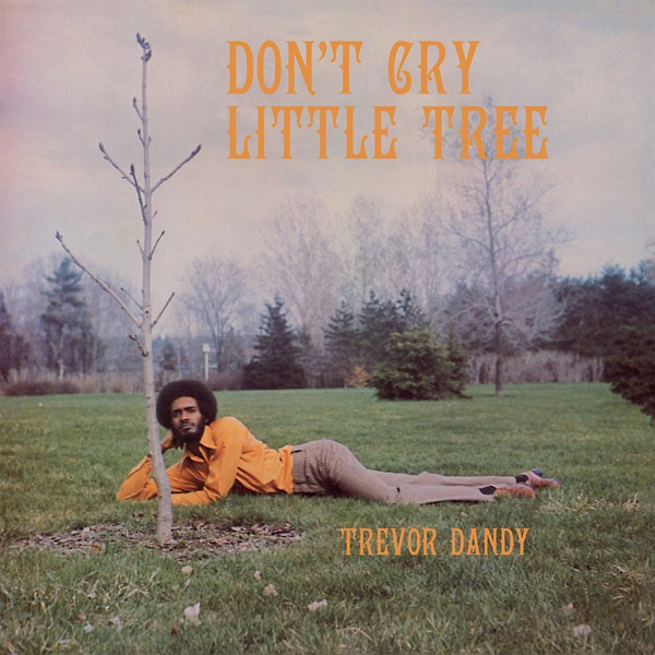 Trevor Dandy - Dont Cry Little Tree (LP)