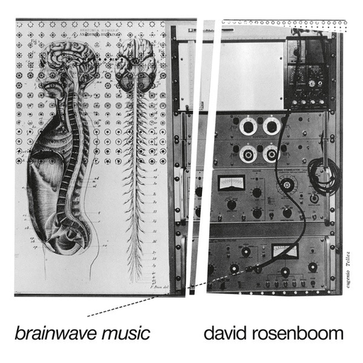 David Rosenboom - Brainwave Music (2LP Import)