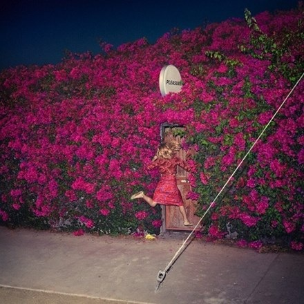 Feist - Pleasure (2LP)