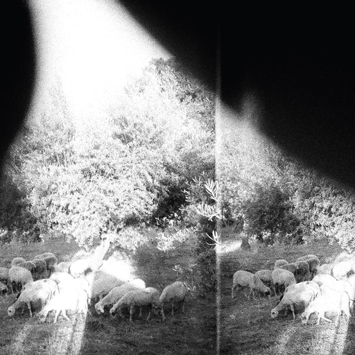 Godspeed You! Black Emperor - Asunder, Sweet And Other Distress (LP)