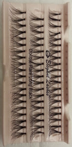 Dozen Super Flare Generic Lashes - Long Black
