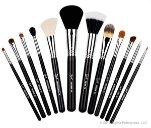 Sigma Essential Kit Brushes