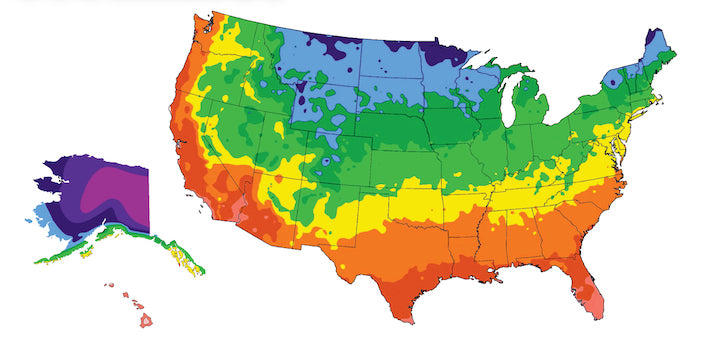 When to Plant Outside Based on Climate Zone