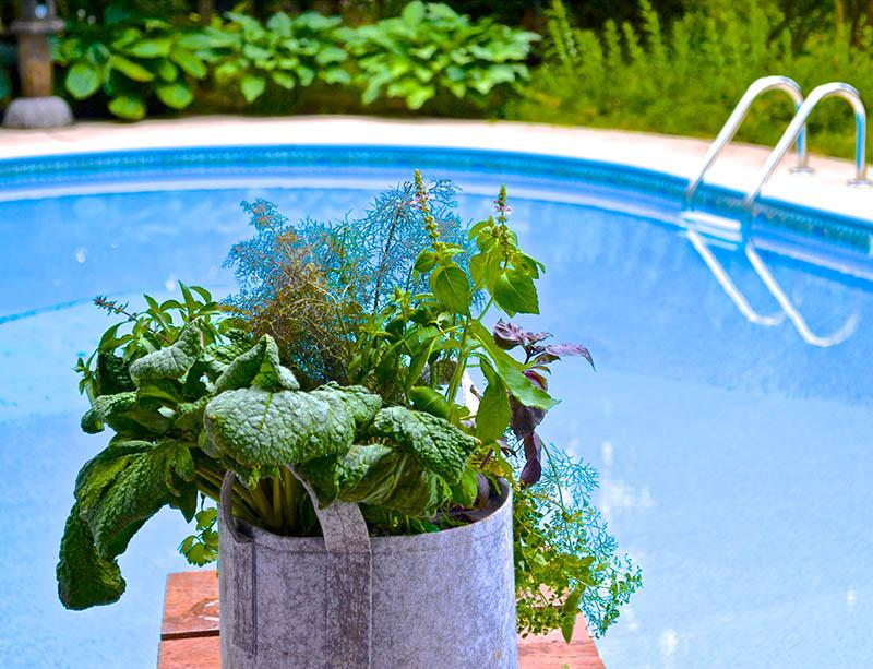 How to Successfully Plant Gardens All Summer Long