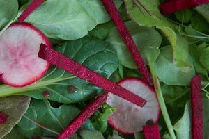 Seedsheet Salad Recipe