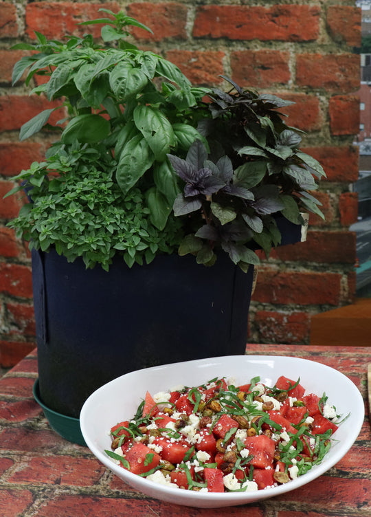 Watermelon, Basil, and Feta Salad