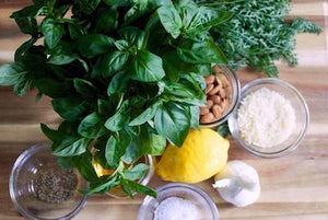 How to Harvest and Store Basil
