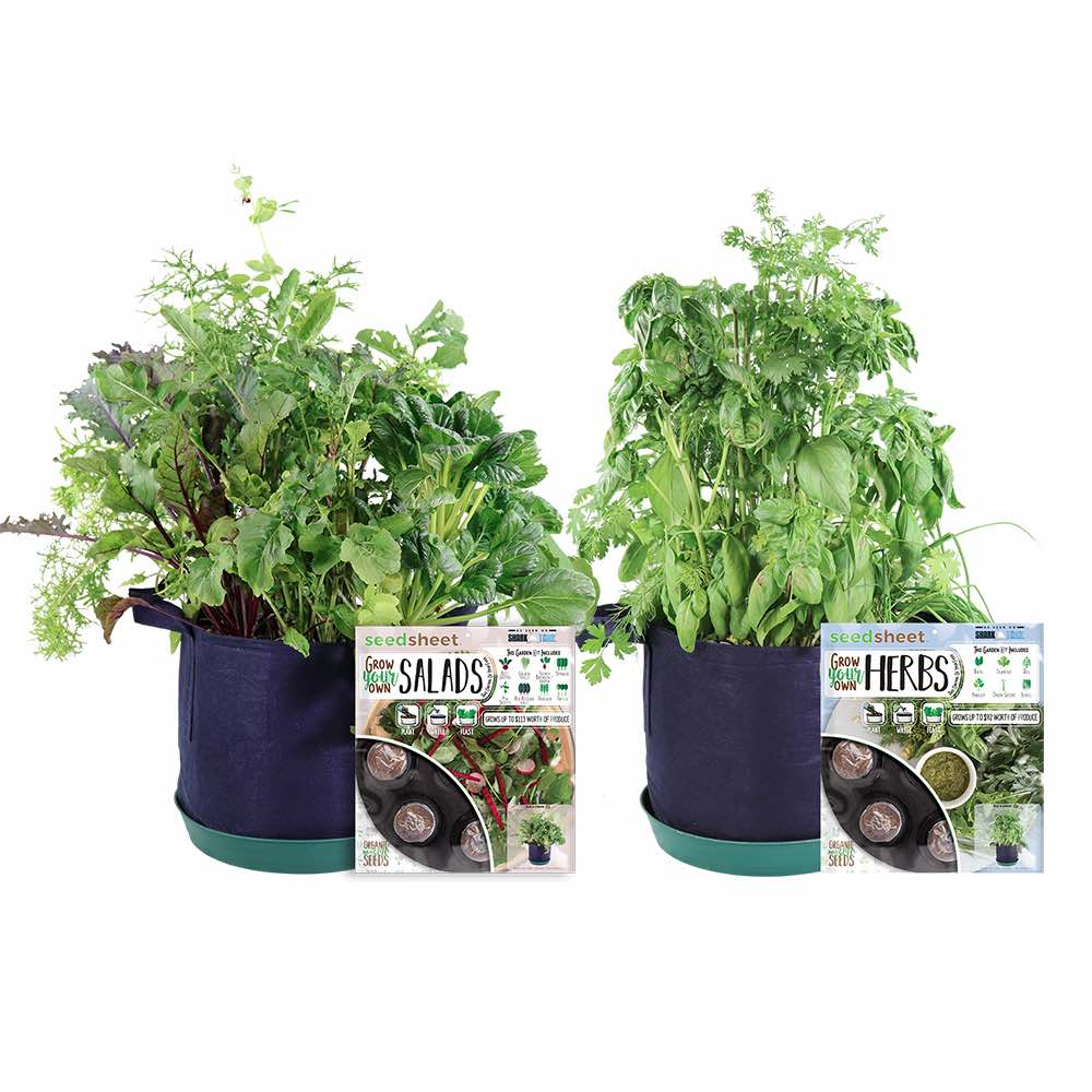GYO Herbs + Salad Kit (2 Pack) - Seedsheet