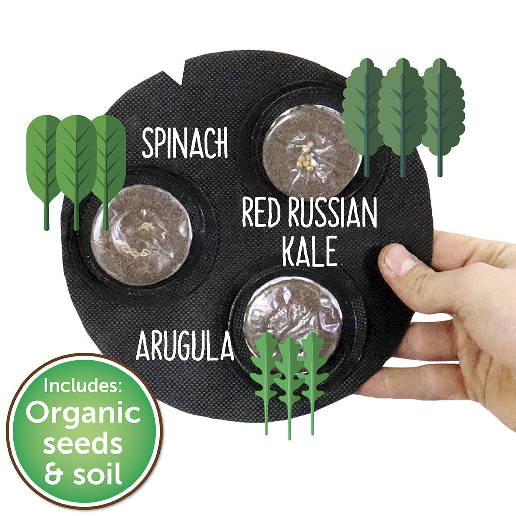 Grow Your Own Mini Salad Kit - Seedsheet