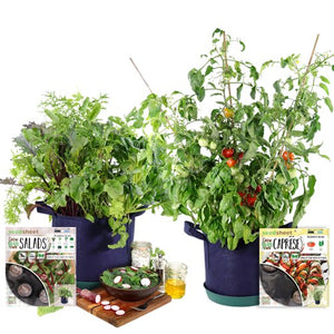 GYO Salads + Caprese Kit (2 Pack) - Seedsheet