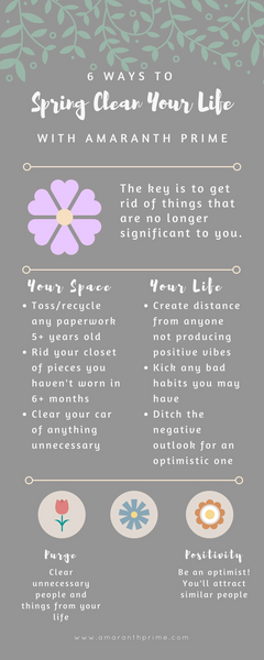 how to spring clean infographic