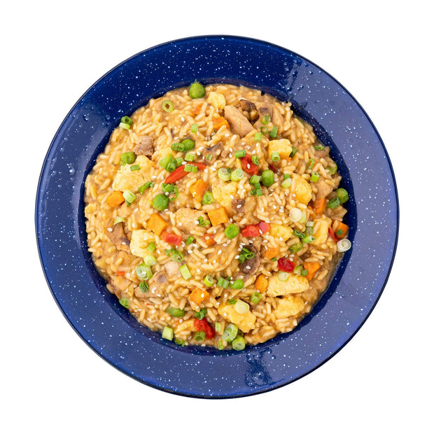 Chicken Fried Rice- Mountain House