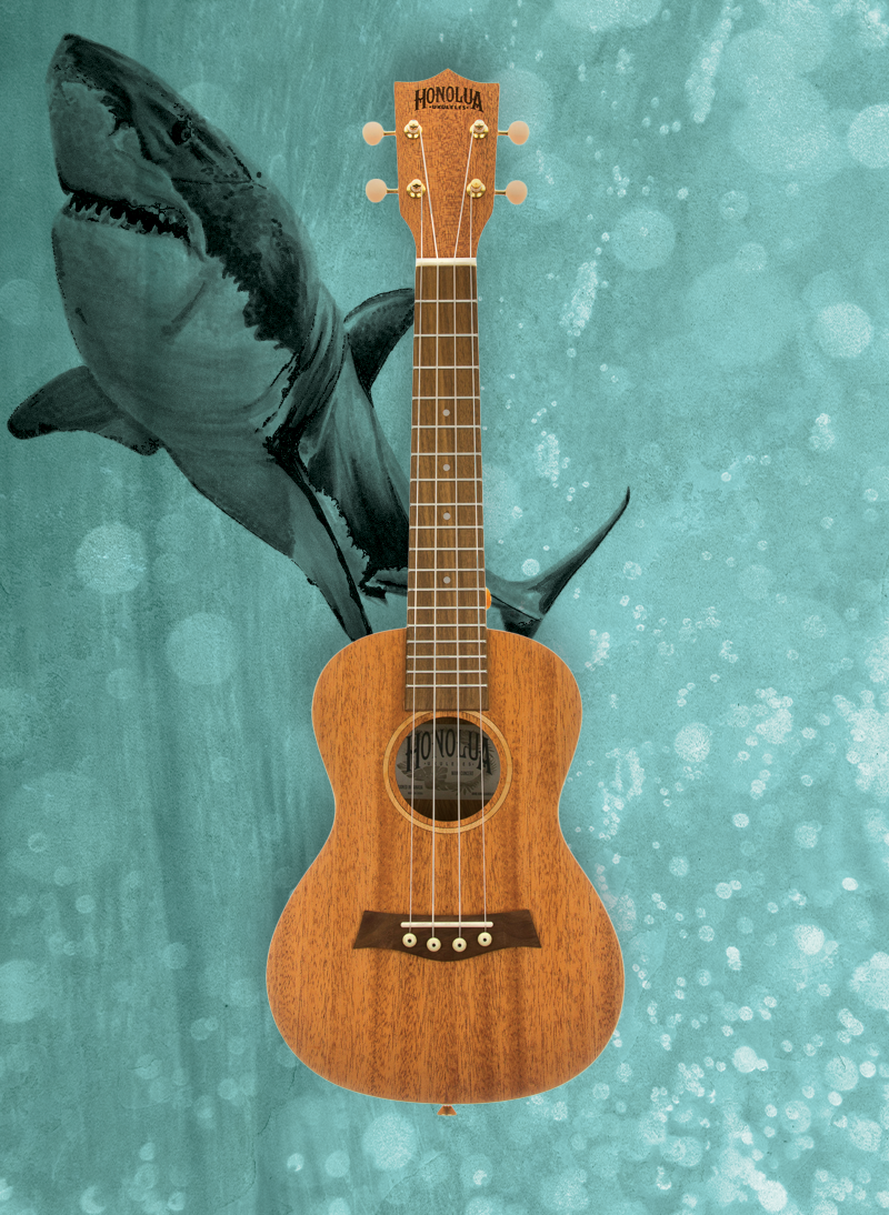 Mano Series solid top ukulele