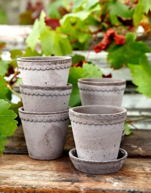 Grey 10cm Helena Clay Plant Pot | By Bergs Potters - uBaaHaus