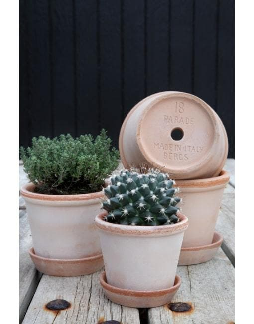 13cm Parade Clay Plant Pot | By Bergs Potters