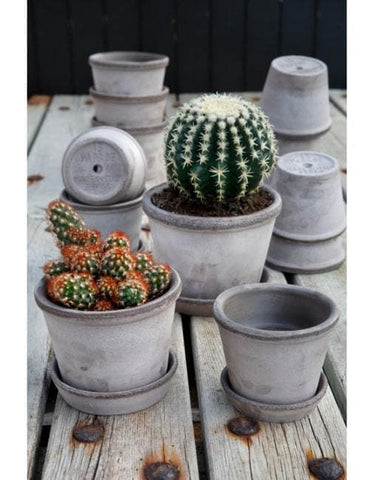 13cm Parade Clay Plant Pot | By Bergs Potters - uBaaHaus