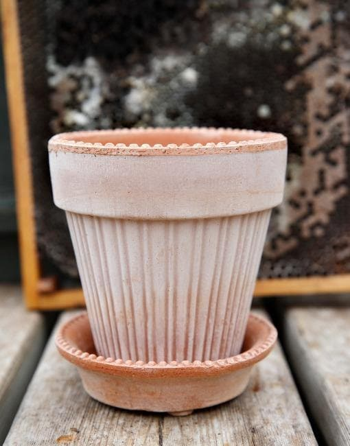 14cm Simona Clay Plant Pot | By Bergs Potters