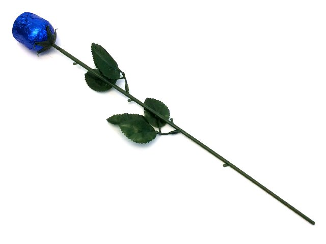 Chocolate Rose - Blue